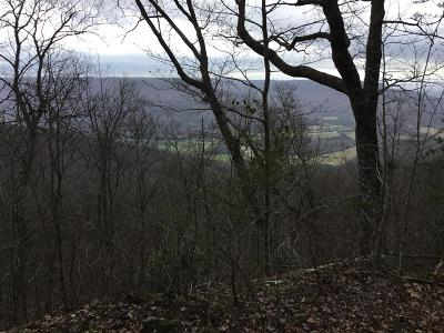 Sewanee Residential Lots & Land For Sale: Jackson Point Rd