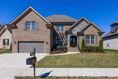 Spring Hill Single Family Home For Sale: 8006 June Apple Ln