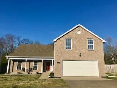 Williamson County Single Family Home For Sale: 415 Knob Ct.