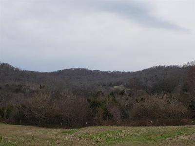 Sumner County Residential Lots & Land For Sale: 3163 C Highway 3163c