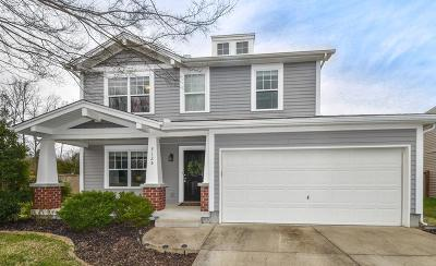 Mount Juliet Single Family Home Under Contract - Not Showing: 3125 Aidan Ln