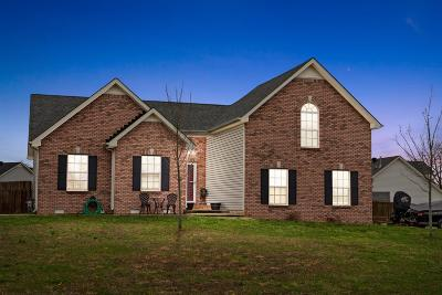 Clarksville Single Family Home For Sale: 896 Landing Way