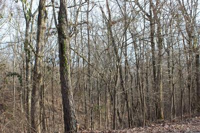 Adams, Clarksville, Springfield, Dover Residential Lots & Land For Sale: 83 Eagle Rest