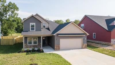 Clarksville Single Family Home For Sale: 68 Reserve At Sango Mills