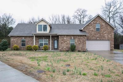 Smyrna Single Family Home For Sale: 8001 Dave Way