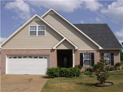 Spring Hill Rental For Rent: 1019 Golf View Way