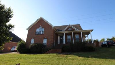 Hendersonville Single Family Home For Sale: 126 Chipwood Dr