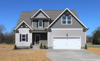 Mount Juliet Single Family Home For Sale: 2374 Couchville Pike