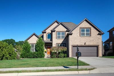 Williamson County Single Family Home For Sale: 7026 Brindle Ridge Way