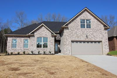 Smyrna Single Family Home For Sale: 5304 Patience Drive, Lot 52