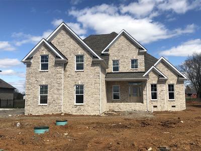 Murfreesboro Single Family Home For Sale: 1725 North Side Drive