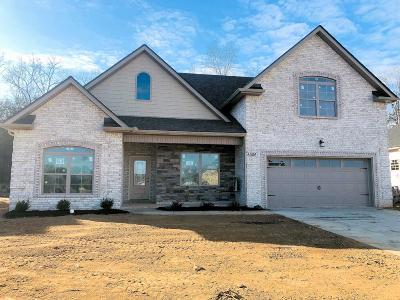 Smyrna Single Family Home Under Contract - Not Showing: 5306 Patience Dr, Lot 53