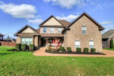 Mount Juliet Single Family Home For Sale: 691 Scotland Trce