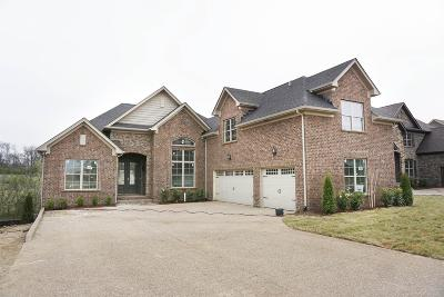 Sumner County Single Family Home For Sale: 1028 Appaloosa Way Lot 4
