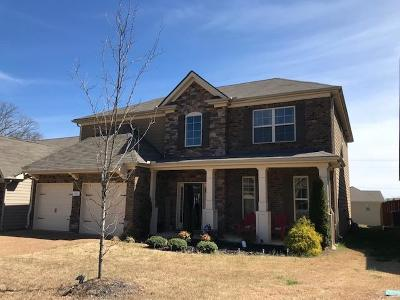 Spring Hill Single Family Home For Sale: 3002 Alan Dr