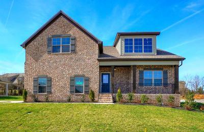 Murfreesboro TN Single Family Home For Sale: $389,900
