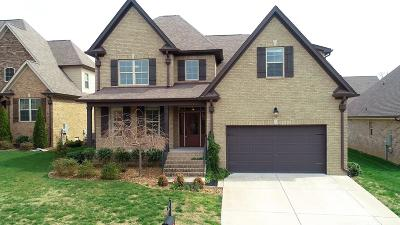 Spring Hill Single Family Home For Sale: 7002 Brindle Ridge Way