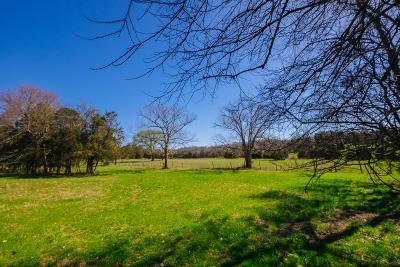 Wilson County Residential Lots & Land For Sale: 1 Burton Rd