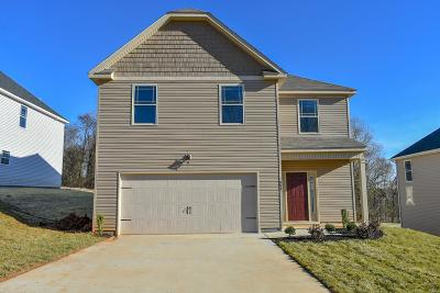 Clarksville Single Family Home For Sale: 1196 Henry Place Blvd.