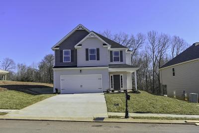 Clarksville Single Family Home For Sale: 1005 Black Oak Circle