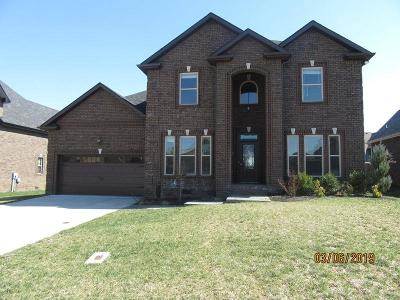 Clarksville Single Family Home For Sale: 2517 Remington Trc