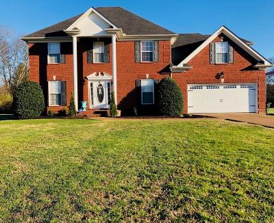 Sumner County Single Family Home For Sale: 161 Summerlin Dr