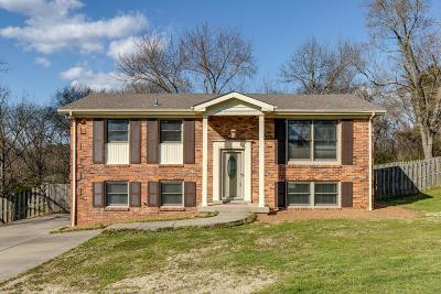 Hendersonville Single Family Home Under Contract - Not Showing: 125 Robinhood Cir
