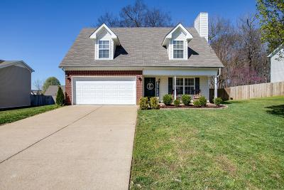 Spring Hill Single Family Home For Sale: 1899 Portview Dr