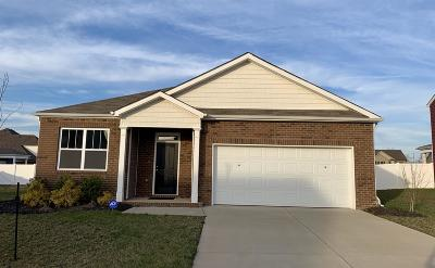 Clarksville Single Family Home For Sale: 265 Autumn Terrace Ln Lot 203