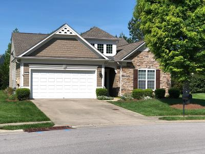 Mount Juliet Single Family Home For Sale: 184 Navy Cir