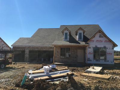 Murfreesboro Single Family Home For Sale: 2417 Bull Rush Lane (Lot 85)