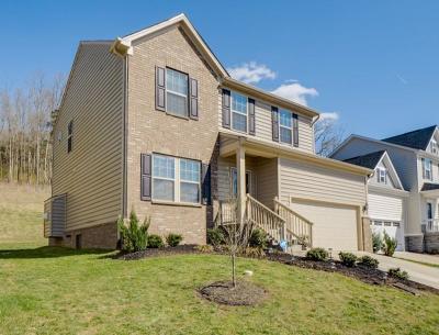 Nashville Single Family Home For Sale: 737 Preservation Way