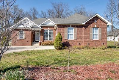 Mount Juliet Single Family Home For Sale: 253 Oak Point Ln