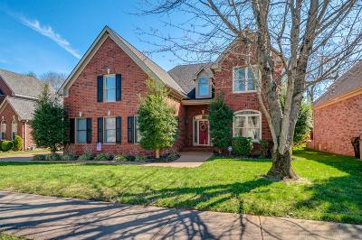 Franklin Single Family Home For Sale: 156 Sontag Drive