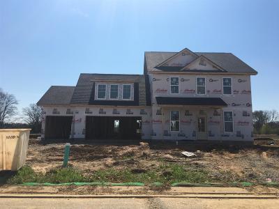 Murfreesboro Single Family Home For Sale: 2425 Bull Rush Lane (Lot 87)