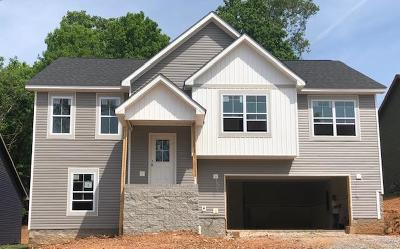 Clarksville Single Family Home For Sale: 3 Eagles Bluff