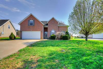 Murfreesboro Single Family Home For Sale: 1145 Mantle Way