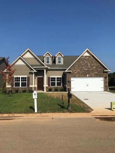 Smyrna Single Family Home For Sale: 149 Neecee Dr.