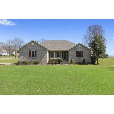 Franklin County Single Family Home For Sale: 140 Brandi Way