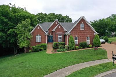 Hendersonville Single Family Home For Sale: 133 Buckhaven Dr