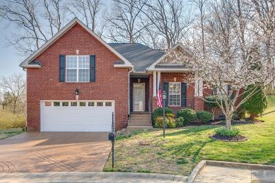 Hermitage Single Family Home Under Contract - Showing: 4292 Rachel Donelson Pass