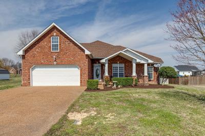 Robertson County Single Family Home For Sale: 2069 Sunday Silence Drive