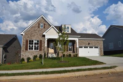 Spring Hill  Single Family Home For Sale: 119 Split Rail Lane Lot 03