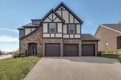 Lebanon Single Family Home For Sale: 1005 Waterstone Dr