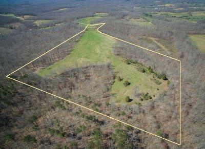Williamson County Residential Lots & Land For Sale: Green Chapel Rd