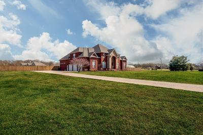Williamson County Single Family Home For Sale: 1829 Lewisburg Pike