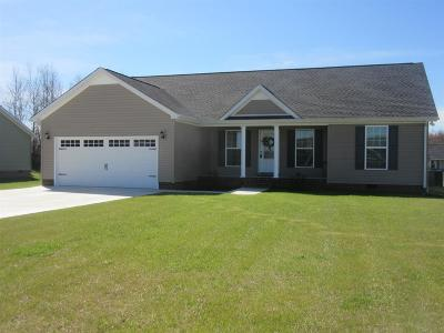 Smithville Single Family Home For Sale: 147 Autumn Evening St