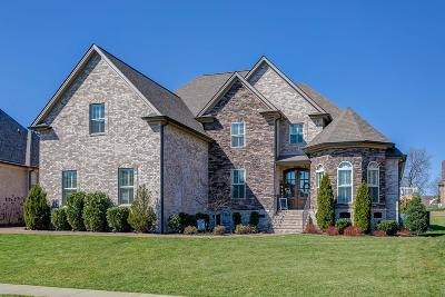 Spring Hill Single Family Home For Sale: 7009 Kidman Ln