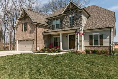 Clarksville Single Family Home For Sale: 1313 Easthaven Dr