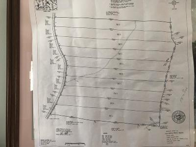 Ashland City Residential Lots & Land For Sale: 1133 Carney Winters Rd. Tract 6